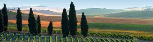 Foto Startseite Spaniens Weinwelten