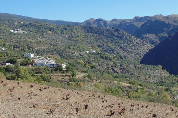 Blick auf ein Alpujarra-Tal