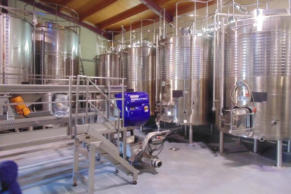 Weinkeller, Chinchilla