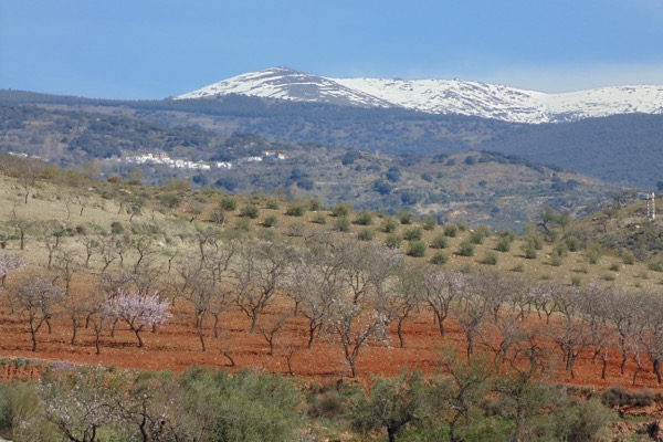 Landschaft bei Ugijar
