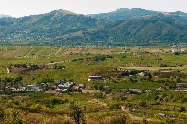 Weinlandschaft in Bierzo
