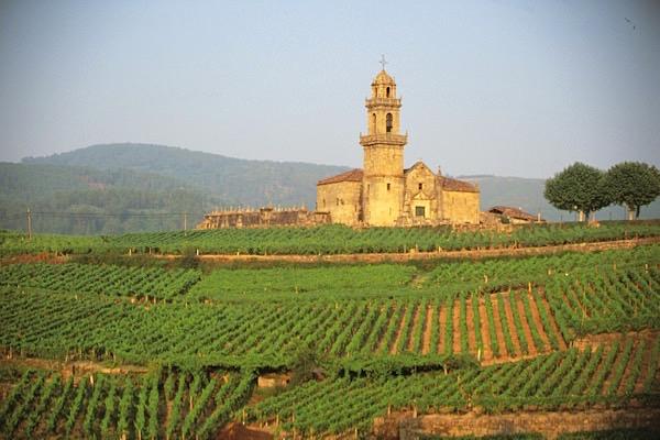 Weinlandschaft Ribeiro, Galicien