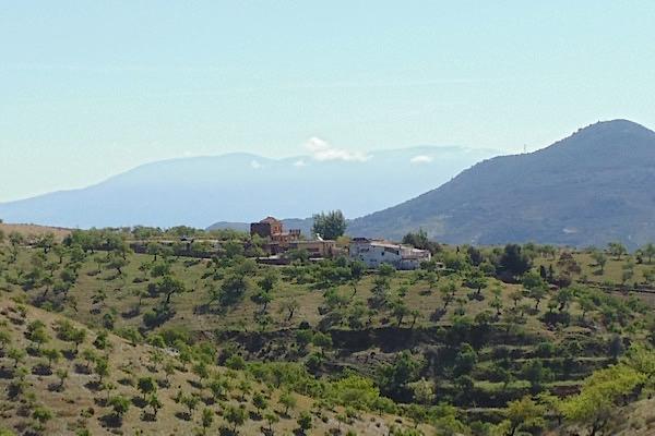 Das Weingut Barranco Oscuro in der Sierra de la Contraviesa