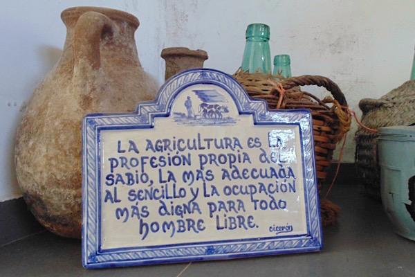 Cicero Zitat in der Vinothek von Barranco Oscuro