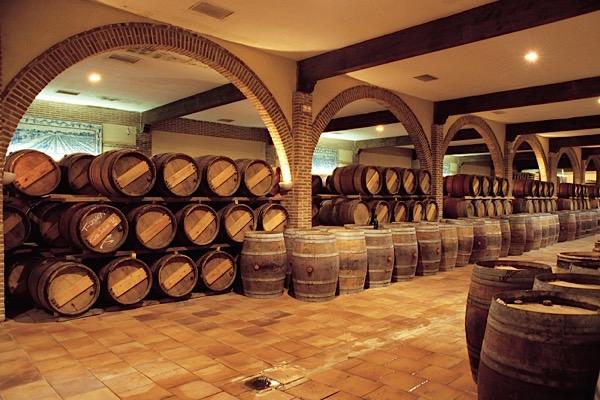 Weinkeller von Marques de Grinon