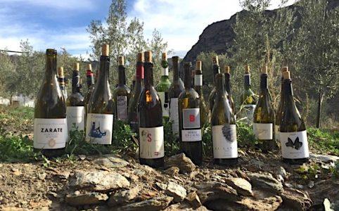 Weinflaschen 2017