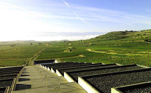Bodegas Baigorri, Rioja Alavesa
