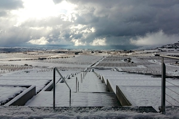 Bodegas Baigorri, Rioja Alavesa, Winter