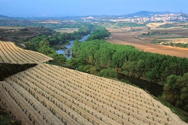 Ebro Rioja
