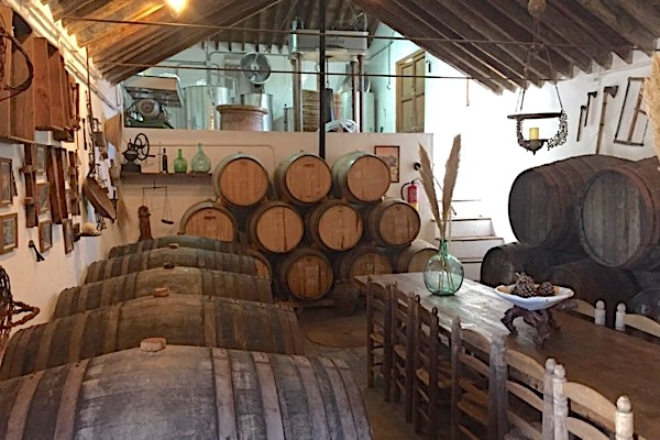 Weinkeller von Bodegas Almijara