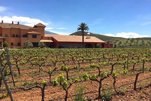 Weingut Hacienda Senorio de Nevada