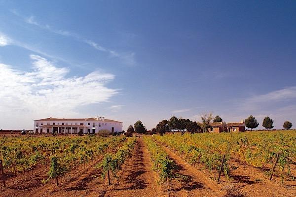 Finca Éliz, Vino de Pago, Bodega Manzaneque