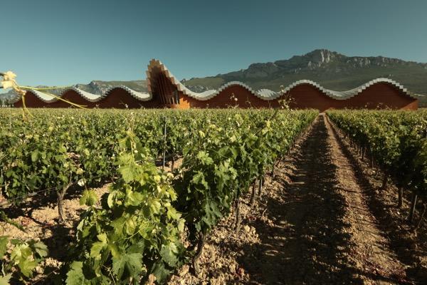 Bodegas Ysios in Rioja