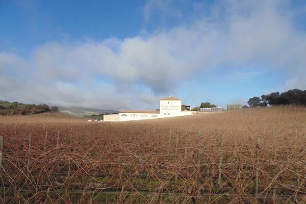 Ansicht Bodegas Dona Felisa, Chinchilla