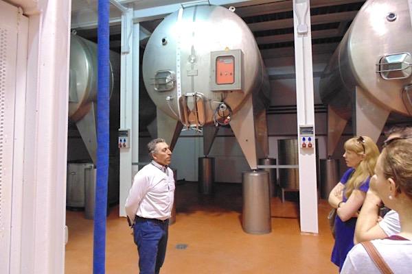 Im Weinkeller bei Bodegas Mendez Moya