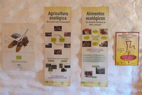 Ökologische Landwirtschaft wird großgeschrieben