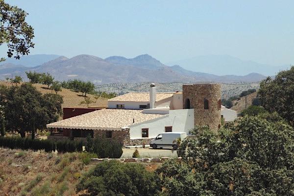 Bodegas Palomillo in der Provinz Almeria