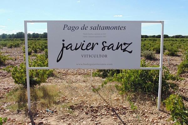 Pago Saltamontes, Javier Sanz, Rueda