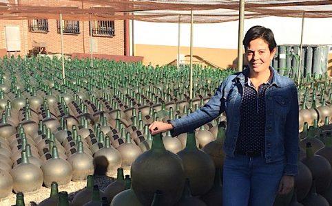 Pilar Garcia del Pino, Palacio de Bornos, Dorado aus Verdejo, Rueda