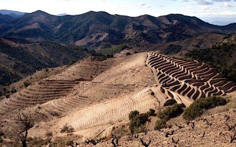 Vall Llach, in Porrera