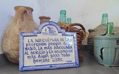 Barranco Oscuro, Naturwein, in der Bodega