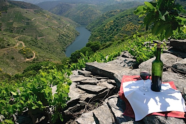 Hanglage am Fluss Sil in Ribeira Sacra