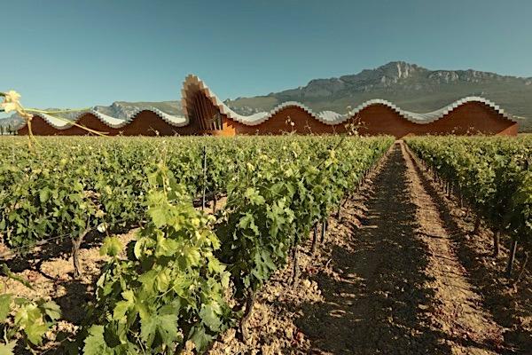 Ysios Kellerei, Rioja, Gesamtaufnahme