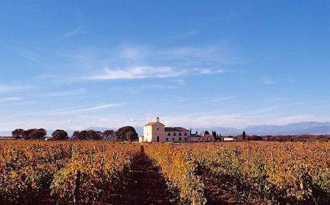 Marques de Grinon, Vino de Pago, Dominio de Valdepusa