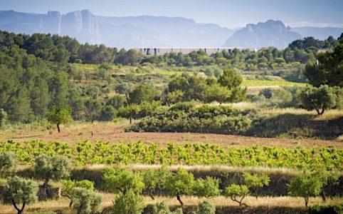 Herencia Altes, Landschaftsbild