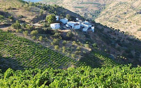 Bodega Garcia de Verdevique in der Alpujarra-Contraviesa