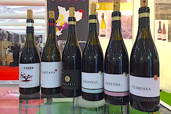 Rotweine von Edetària: aus Garnacha Fina, Garnacha Peluda und Carinena