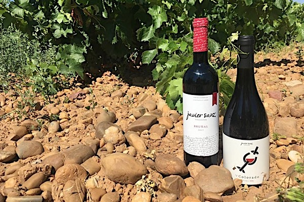 Rotweine von Javier Sanz Viticultor.