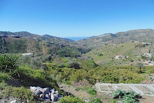 Auf dem Gelände von Bodegas Almijara. Im Hintergrund das Mittelmeer.