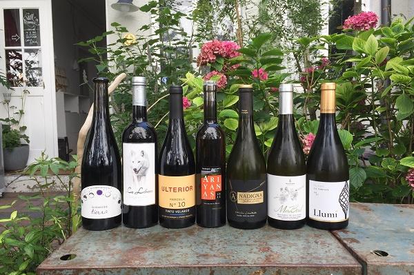 Spanischer Wein in einem reizenden Hinterhof