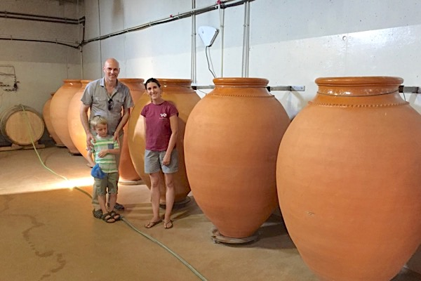 Einige der Weine werden in Tonamphoren vergoren und ausgebaut