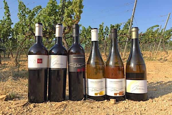 Vinyes d'Olivardots: Hochfeine und frische Weine