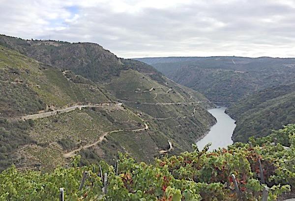 Am Fluss Sil im Anbaugebiet Ribera Sacra