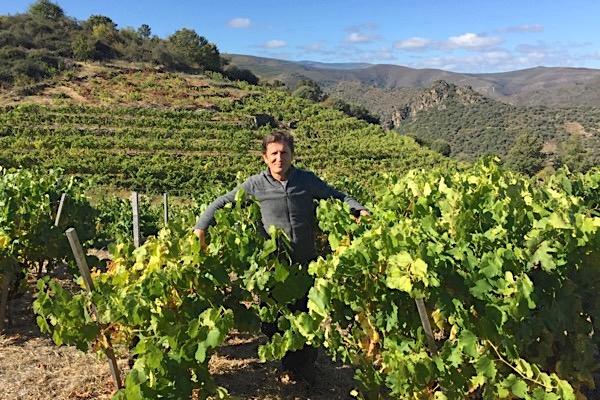 Rafael Palacios in Valdeorras. Der beste Weißwein 2019 kommt von ihm.