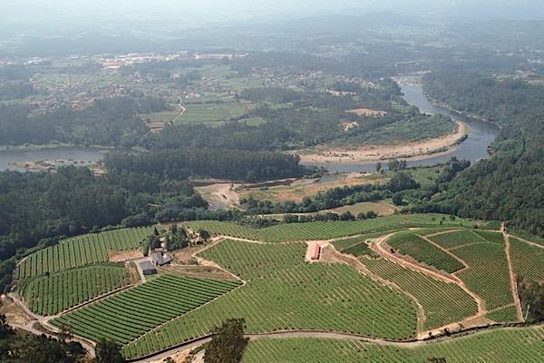 Weingut Fillaboa in Rías Baixas von oben