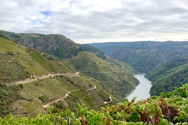 Ribeira Sacra ist inzwischen eine der angesagtesten Weinappellationen Spaniens. Nicht so im The World Atlas of Wine.