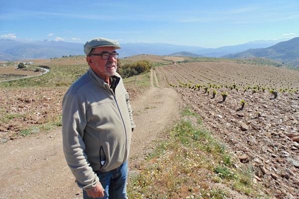 Mit Manuel Valenzuela auf 1368 m in den höchsten Weinlagen Kontinentaleuropas. Andalusien.
