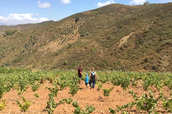 Im Weinberg mit Vicente Inat