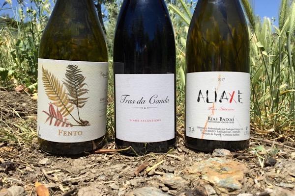 Rotweine aus Rotweine aus Caiño Tinto, Espadeiro, Loureira Tinta und Sousón