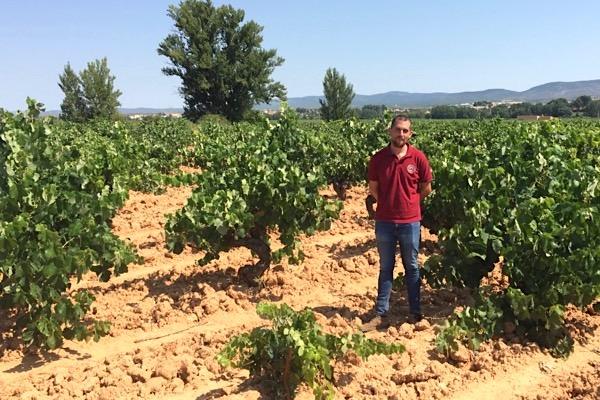 Pablo Martínez ist bei Vegalfaro für die Pflege der Weinberge zuständig