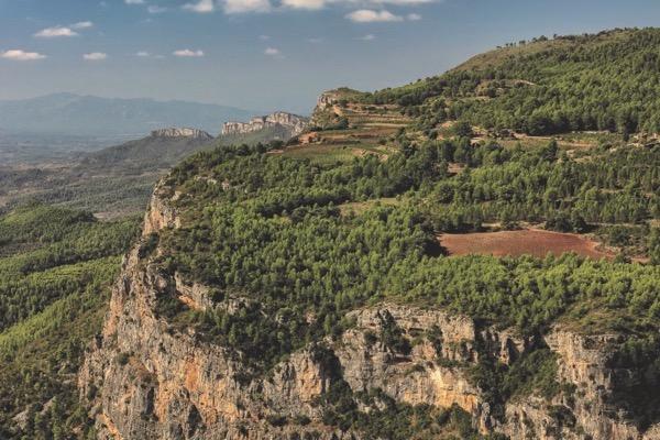 Les Manyes im Priorat. Die Weinlage von Terroir al Limit ist mit Garnacha Peluda bestockt.