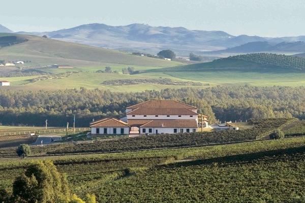 Weingut Huerta de Albalá nahe Arcos de la Frontera, V.T. Cádiz