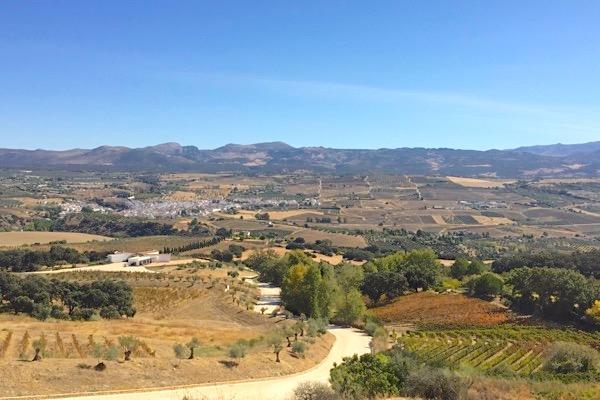 Im Vordergrund ein Teil des Anwesens von Finca La Melonera, mit der weiß getünchten Kellerei links. Im Hintergrund die Serrania de Ronda.