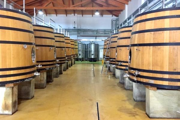 """Die Weinkellerei ist in allen Bereichen tiptop ausgestattet und """"State of the Art""""."""