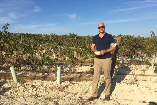Der Blogger im Cádiz-Gebiet. Weinberg mit den typischen Albariza-Böden.
