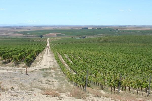 Rueda liegt auf einer Hochebene auf 700 bis 900 m.ü.NN.